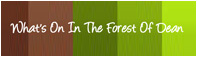 What's On In The Forest of Dean Logo